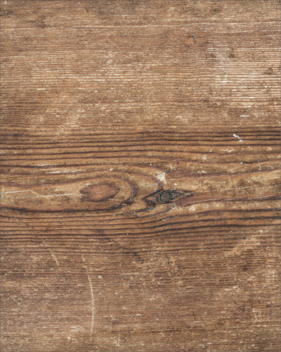 Fliesenaufkleber Fliesen Aufkleber Holz Baum Kiefer Fichte Bad WC Küche Kachel