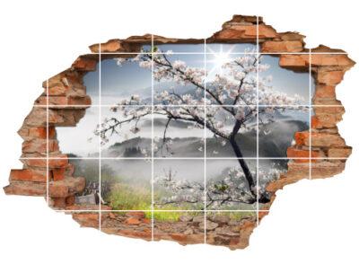 Fliesen-Tattoo Fliesen-Sticker Wand-Durchbruch Blüten-Kirsche Frühling Baum Landschaft Deko Raum-Gestaltung
