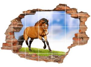 Fliesen-Tattoo Fliesen-Sticker Wand-Durchbruch Pferde Reit-Pferde Hengste horse Deko