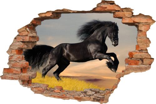 3D Wand-Aufkleber Wand-Bild Wand-Tattoo Wand-Sticker Wand-Durchbruch Pferde Renn-Pferde horse black schwarz