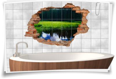 Wand-Durchbruch Wiese Wald-See Gras-Grün-e Landschaft Wasser-Spiegelungen