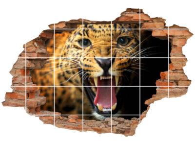 Bilder aggressiv-e Katze Luchs Trab Stärke Kraft Energie gelb-schwarz Reiß-Zähne