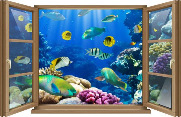 Wand Tattoo Wand Bild Fenster Fische Riff Aquarium Unter Wasser Korallen Aufkleber Folie Deko Medianlux Shop